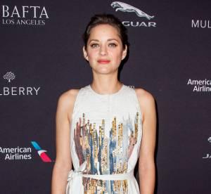 Marion Cotillard, Julianne Moore, Bradley Cooper : les nominés aux Oscars 2015