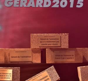 La cérémonie des Gérard de la télévision 2015 avait lieu ce lundi au Théâtre Daunou à Paris. De nombreux programmes et personnalités ont ainsi pu recevoir leurs parpaings dorés.