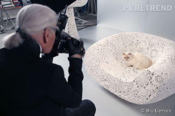 Choupette, la muse de la collection Noël 2014 de Shu Uemura photographiée par son maître Karl Lagerfeld.