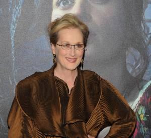 Meryl Streep n'a pas hésité à écrire une lettre au Congrès américain en faveur de l'égalité des sexes.