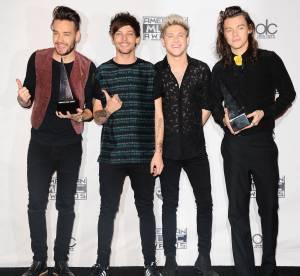 American Music Awards 2015 : le palmarès et les 10 moments forts de la soirée