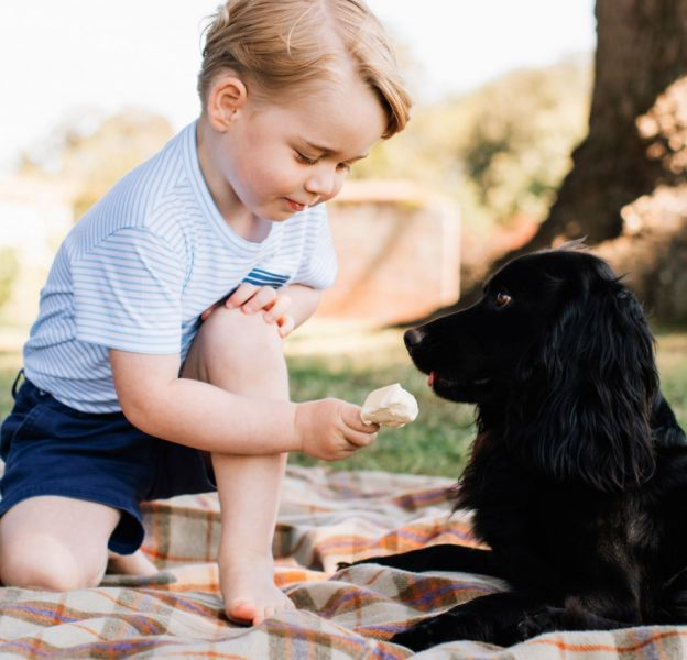 Le prince George est au coeur d'une polémique. La photo qui le montre en train de donner de la glace à son chien fait un vrai scandale outre-Manche.