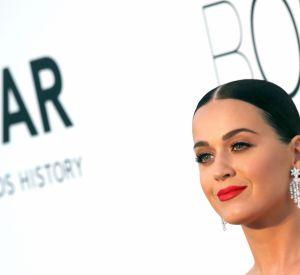 Orlando Blum et Katy Perry sur un paddle, toute une histoire.