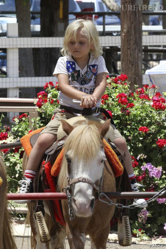 Qui ?  Zuma (encore) notre chouchou dans la famille de Gwen Stefani.    Catégorie ?  Équitation, enfin poney car il fallait trouver une bête à sa taille.