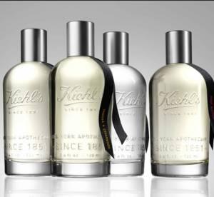 Un voyage olfactif avec Aromatic Blends de Kiehl's