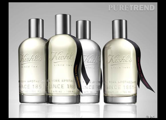 La collection Aromatic Blends s'articule autour de quatre parfums : Fig Leaf & Sage, Nashi Blossom & Pink Grapefruit, Orange Flower & Lychee, Vanilla & Cedarwood.
