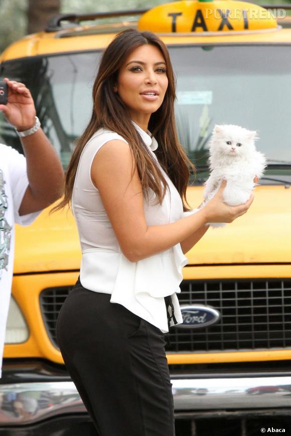 Kim Kardashian a créé la surprise en se promenant avec un petit chaton blanc.