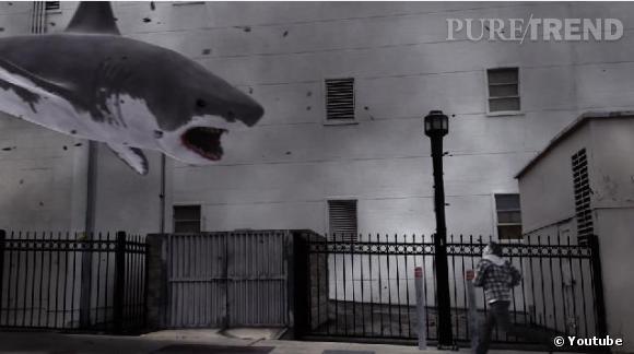 """Un """"Sharknado 2"""" déjà en préparation !"""