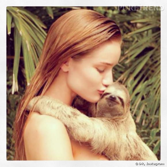 Rosie Huntington partage une ancienne photo de shooting en compagnie d'un paresseux. C'est Kristen Bell qui serait jalouse !
