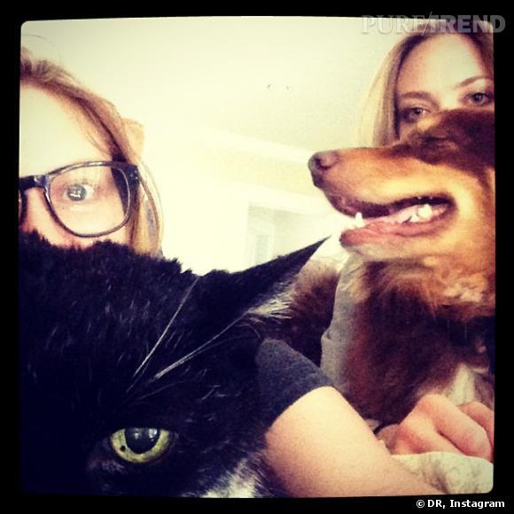 Amanda Seyfried est complètement dingue de son chien Finn, tandis que sa soeur préfère son chat.