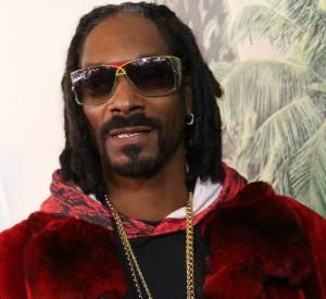 Snoop Dogg fait également partie des rappeurs qui flirtent avec le cinéma.