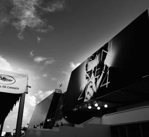 Festival de Cannes 2014 : en attendant Grace...
