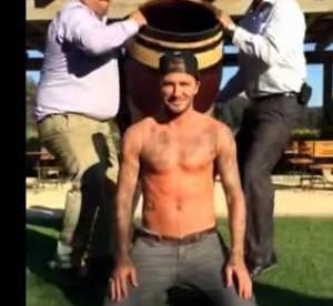 Ice Bucket Challenge : 10 mâles qu'on rêvait de voir en T-shirts mouillés...