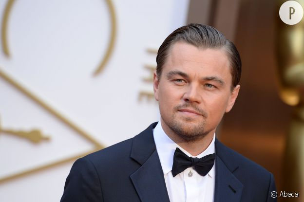 Leonardo DiCaprio, serial beaugosse.
