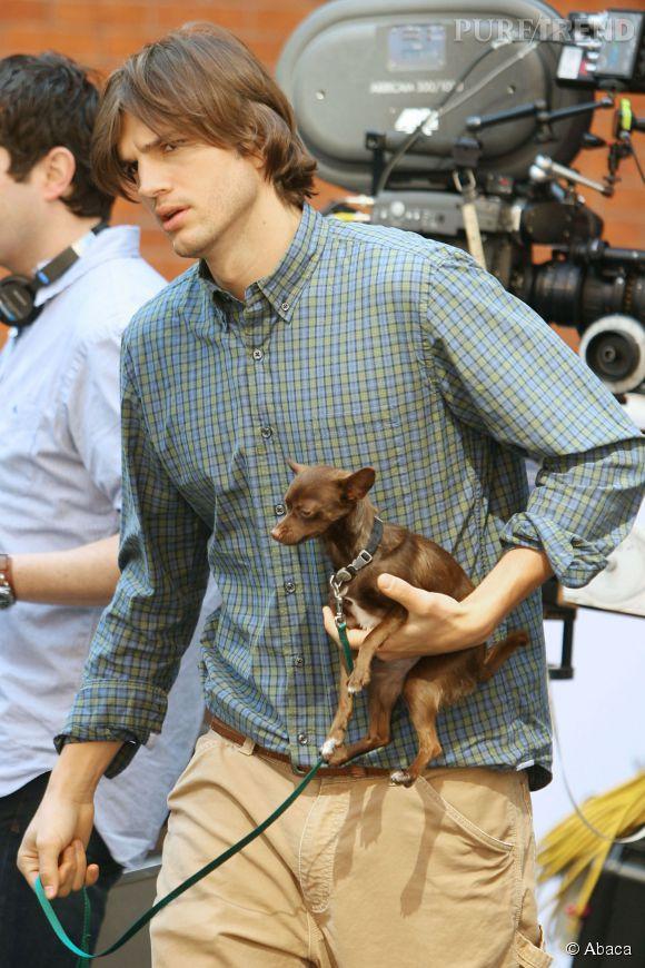 En matière de chiens, Ashton Kutcher aime les petits formats.