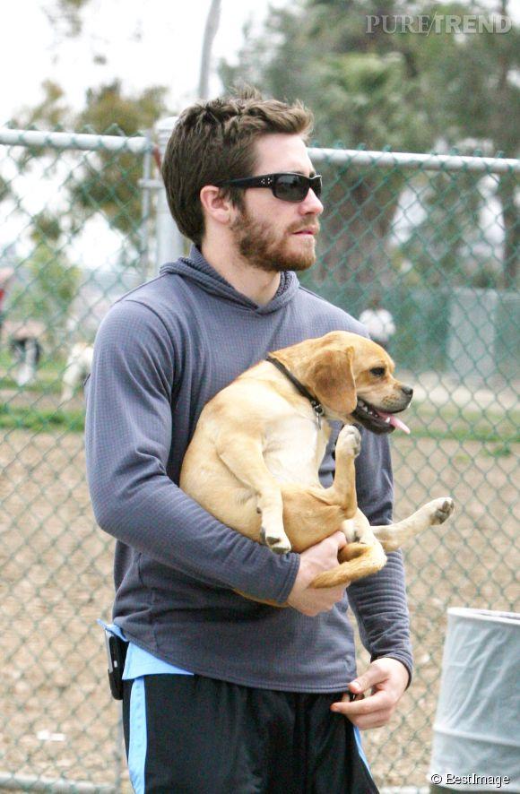 Jake Gyllenhaal, craquant avec sa boule de poils.