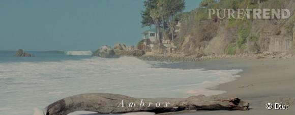 Place aux embruns et à l'ambroxan, matière première de Sauvage, de Dior.