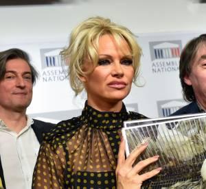Pamela Anderson : forte tête à l'Assemblée Nationale !