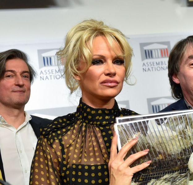 Pamela Anderson invitée ce mardi 19 janvier 2016 à l'Assemblée Nationale à Paris.