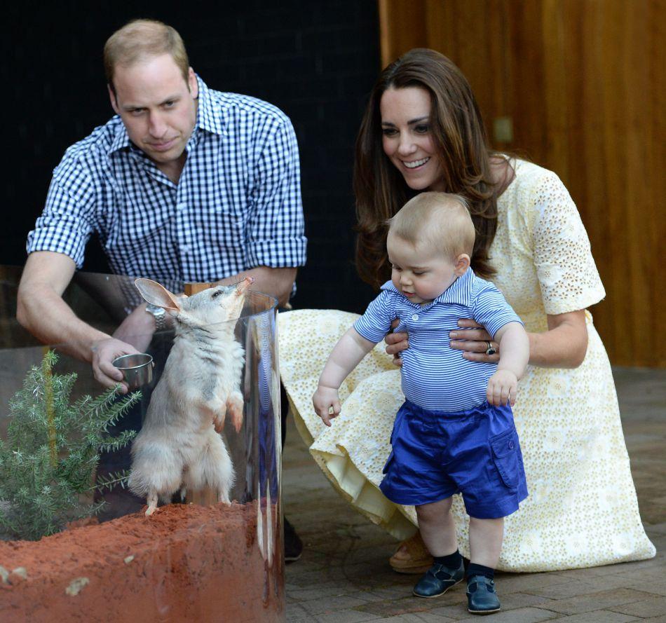 Les parents du petit George, Kate et William, avaient fait découvrir le zoo de Taronga (Sydney) à leur fils, le dimanche 20 avril 2014.