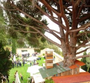 FDMP 2010 : La Villa Noailles et la cabane réalisée par le gagnant 2008, Jean Paul Lespagnard