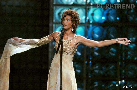 Whitney Houston disparaît la veille des Grammy Awards 2012. La profession ne manque pas de lui rendre hommage au cours de la cérémonie.