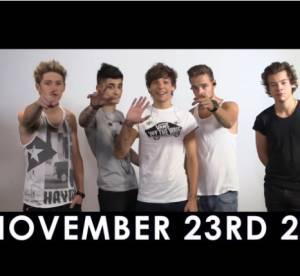 1D Day, Miley Cyrus et Dr Who : battle de fans sur internet le 23 novembre 2013