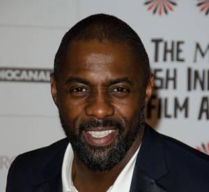 Idris Elba dans le rôle de Nelson Mandela, un pari réussi.