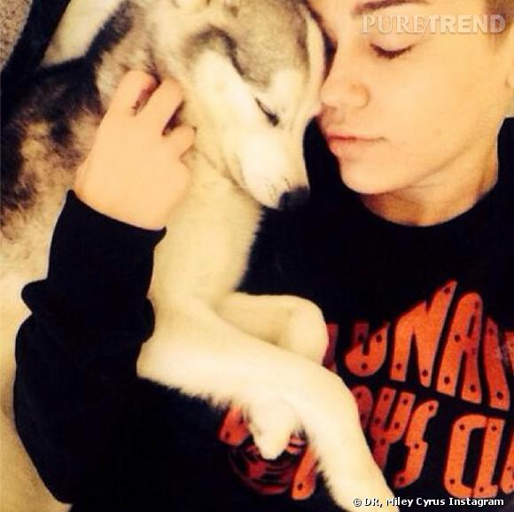 Miley Cyrus préfère la companie des bêtes.