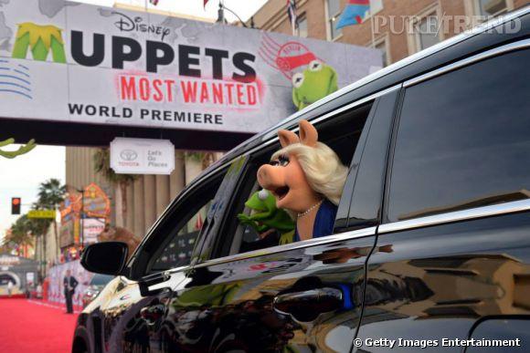 A l'avant-première du film Muppets Most Wanted le 11 mars 2014, les vraies stars c'était Miss Piggy et Kermit!