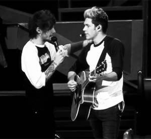 One Direction : ce qu'il se passe vraiment pendant leurs concerts, en 30 Gifs