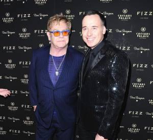Elton John et son compagnon depuis plus de 20 ans David Furnish.