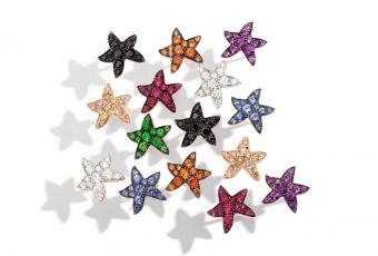 Calendrier de l'Avent J-9 : les précieuses étoiles de mer Dodo