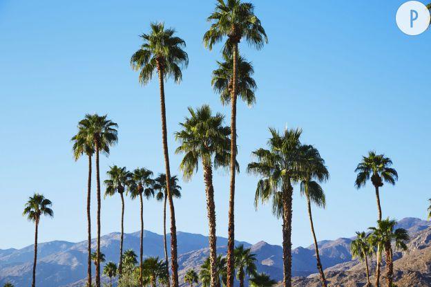 """H&M lance la première collection officielle du festival de musique: """"H&M Loves Coachella""""."""