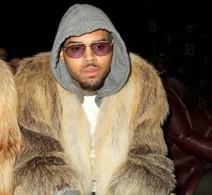 Chris Brown s'est fait un nouvel ennemi, la PETA.