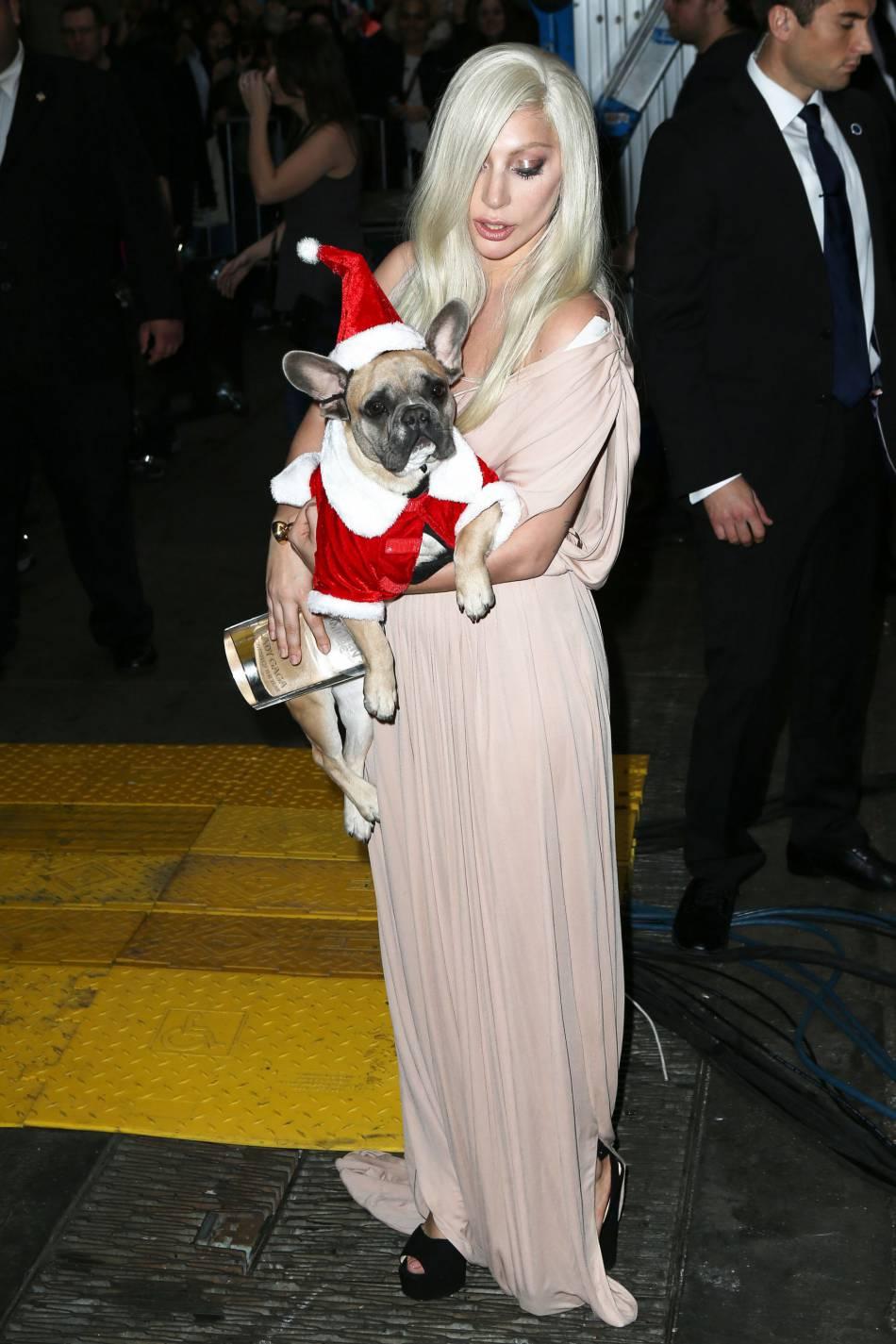 Lady Gaga et l'un de ses bouledogues chéris.