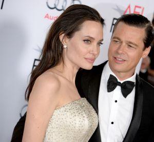 Brad Pitt et Angelina Jolie : le couple star vend sa propriété française