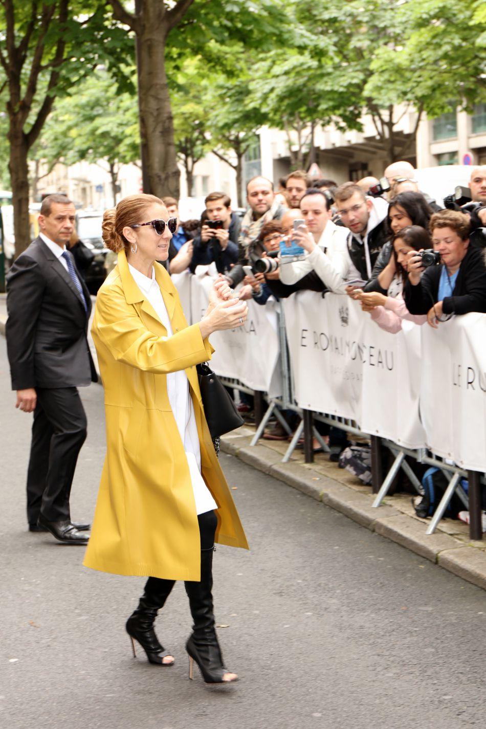 Céline Dion est devenue une vraie bête de mode.