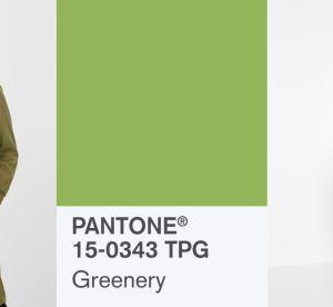 Pantone 2017 : comment porter la couleur de l'année ?