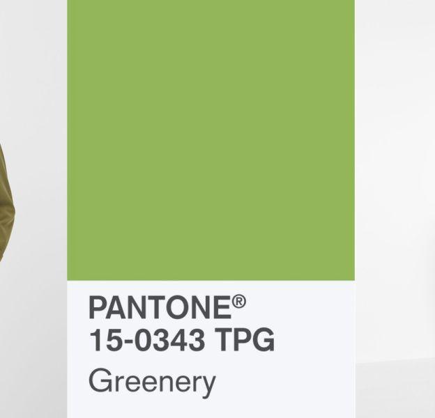 Comment adopter la couleur Pantone 2017 ?