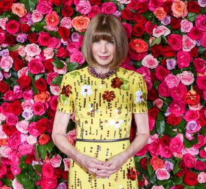 Anna Wintour en baskets : vraie influenceuse ou simple modeuse sous influence ?