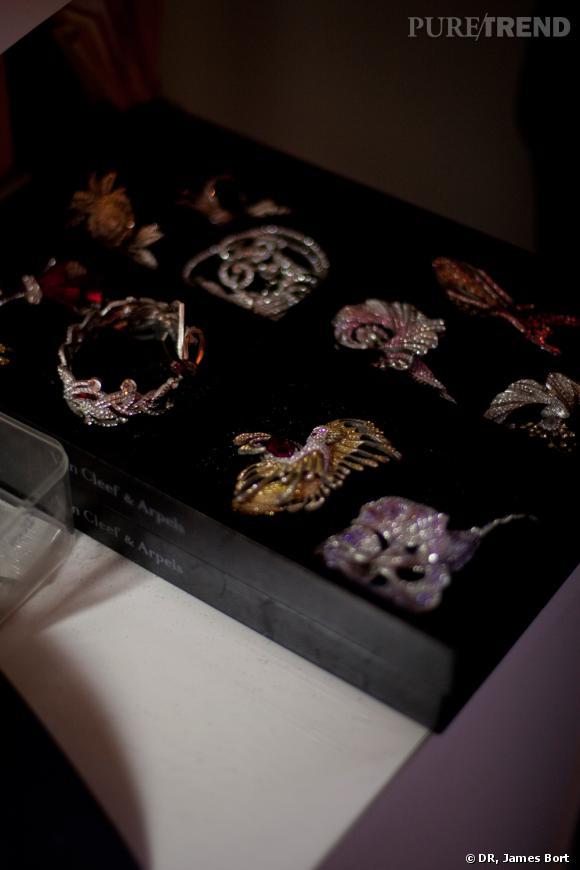 Ecrin contenant plusieurs maquettes.