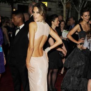 Une main sur la hanche, l'oeil aguicheur, Alessandra Ambrosio ne fait pas dans la demi-mesure.