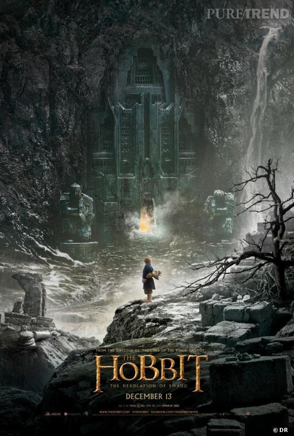 """""""Le Hobbit : la Désolation de Smaug"""" devrait sortir le 11 décembre sur nos écrans, et voici la première affiche officielle."""