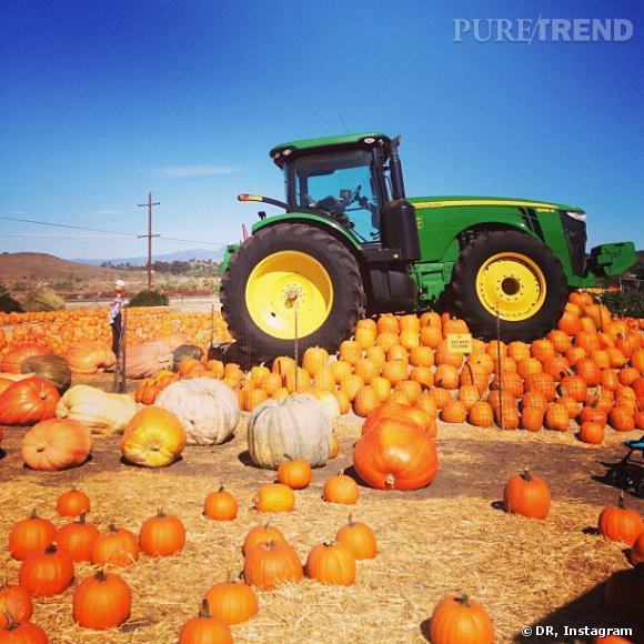 La famille Kardashian se prépare déjà à Halloween avec le ramassage des citrouilles !