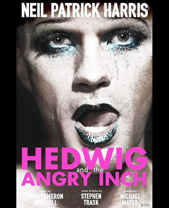 Neil Patrick Harris, transformé pour incarner un transexuel chanteur de rock.