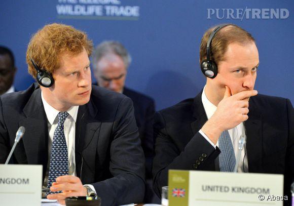Prince William et Prince Harry, les deux frères participaient au programme pour les jeunes entrepreneurs organisés à Buckingham Palace par la Reine. Ils y ont fait un selfie !
