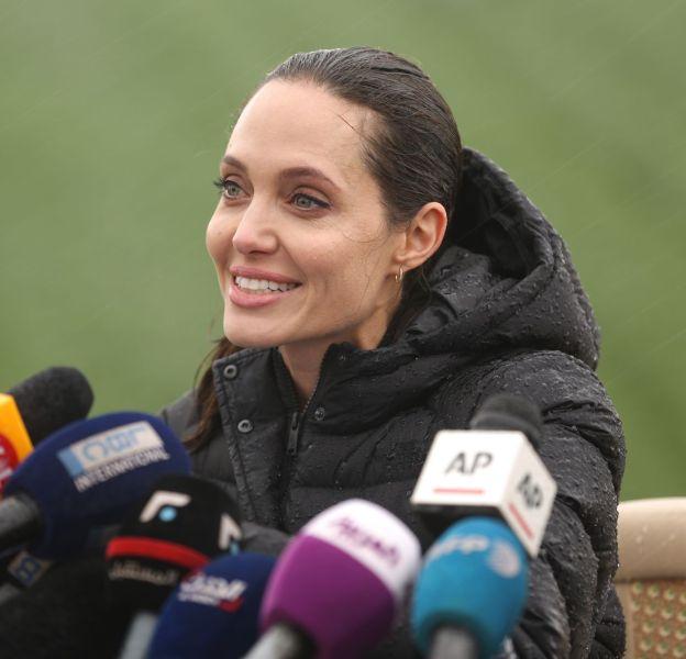 Angelina Jolie veut se lancer en politique.