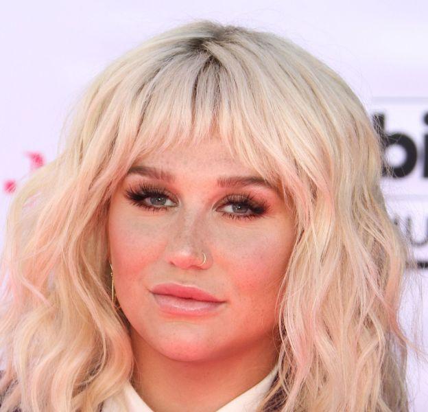Kesha a cloué le bec sur Instagram à un de ses détracteurs qui l'attaquait sur son physique.