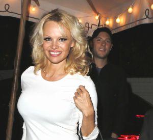 Pamela Anderson poste une photo d'elle nue sur la plage embrassant un cheval sur le museau, un cliché pas anodin...